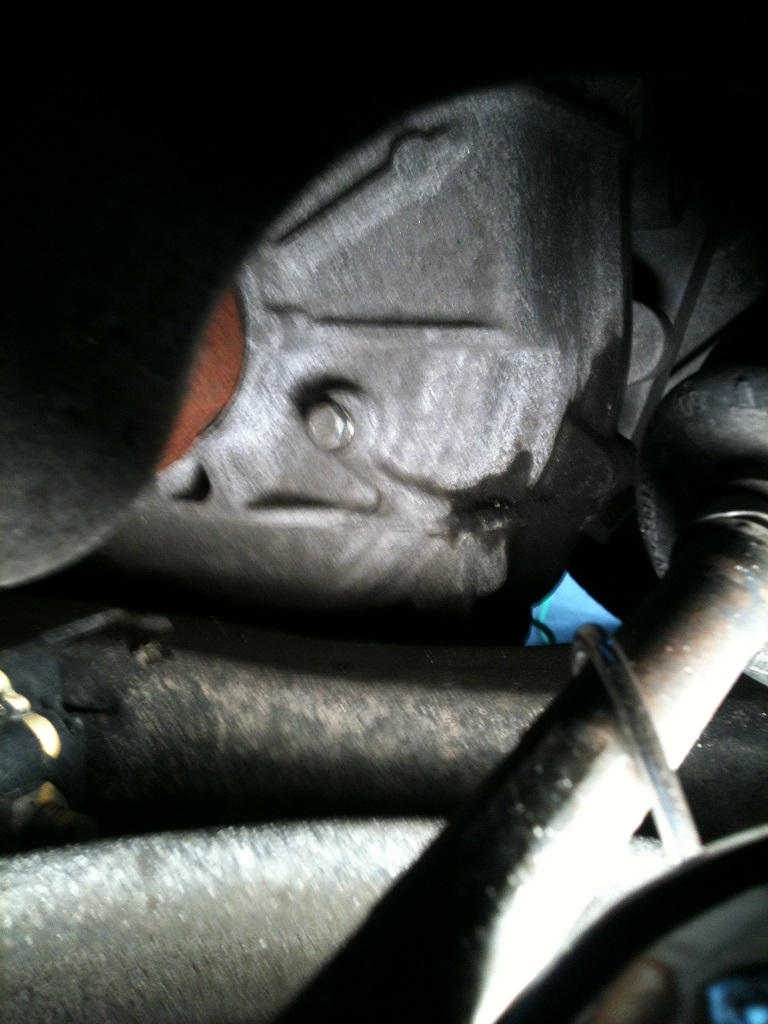 As reported elsewhere in this forum the transmission oil level is above this plug when the engine is not running the level check must be performed with